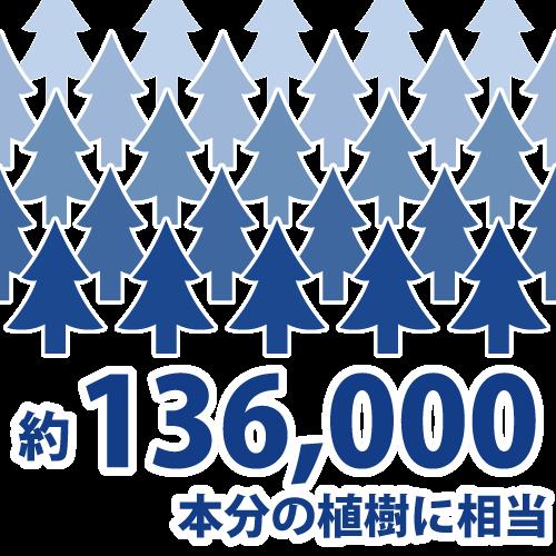 杉の植樹136,000本分